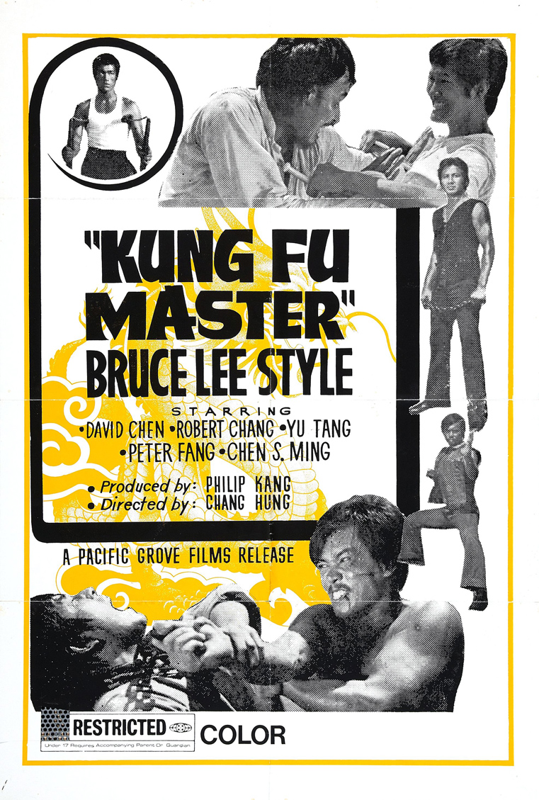 Kung fu master bruce lee style poster 01.jpg