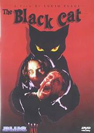 Blackcat2dvd.jpg