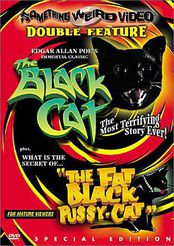 Blackcatsomethingweird.jpg